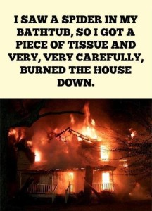 spider-burn-house-down